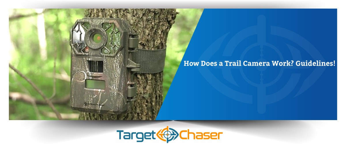 How-Does-a-Trail-Camera-Work