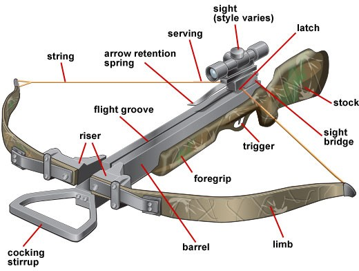 Anatomy-Of-A-Crossbow