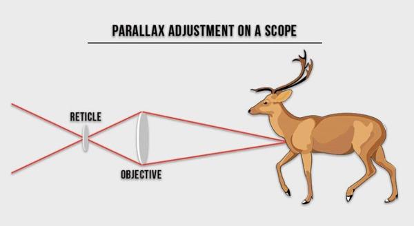 Parallax-Adjustment-on-A-Scope
